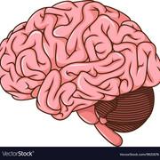 MS3 - Neurologic Care