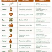 Random Medical Terms