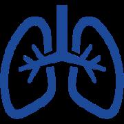 (3a) Pneumologia