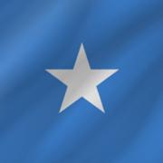 Somali (DLS) - Grammatical