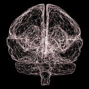 LCRS Y2: Neuroscience and mental health