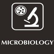 T4 - Micro Q Exam 2 🔬