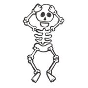 MSK- Anatomy
