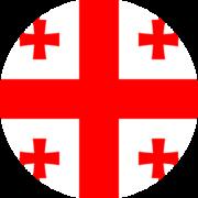 ქართული ენა - თსუ