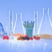 2) Food Chemistry