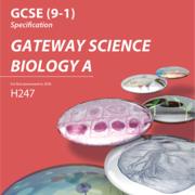 Biology GCSE