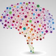 Neuroscience-2