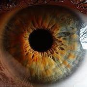Iphone 3x retina images