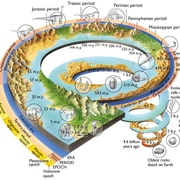 GEO1211: Earth System Sciece: History of Our Planet