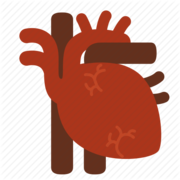 Cardio - 2017 carol