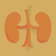 *Medicine: Renal & Urology