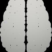 Iphone 3x retina brain