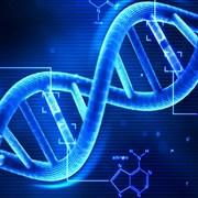 Lathallan N5 Biology