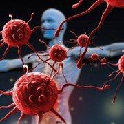 Inmunología Final