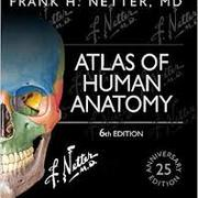 Netter's Atlas of Human Anatomy/ KenHub