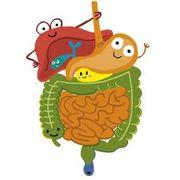 Gastroenterology Flashcards & Quizzes | Brainscape