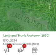 deanne's - LTA (limb & trunk anatomy)
