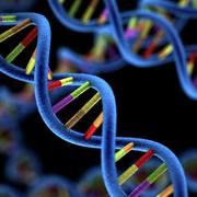 Genomics - SGUL (Sem 3)