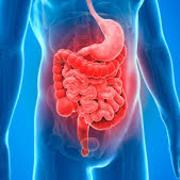 (Gastroenterologia - PNS COPY)