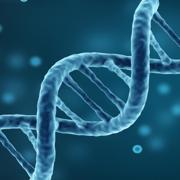 EMS - Genetics