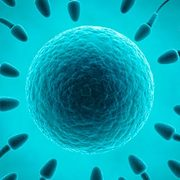 Life Sciences-Reproduction