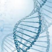 Molecular Biology (MBIO 3410)