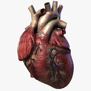 Cardiology,HTN, HF, and Pharm