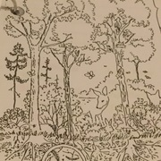 Trees and forest for gr 6