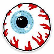 Y2 Ophthalmology Anatomy