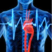 Cardiopulmonology