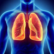 Pulmonology And Special Topics