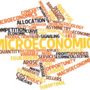 Micro Economics - Eddie