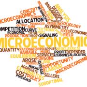 Intro to Advanced Microeconomic Analysis