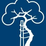 Ortopedia Geral TEOT 2020