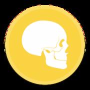 Modul 9 - Anatomi