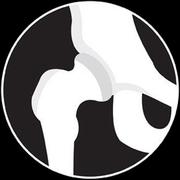 Anatocards - Sistema Esquelético