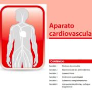 1C Cardiovascular