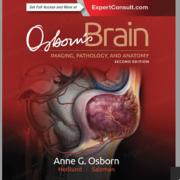 Brain: Imaging, Pathology, and Anatomy