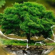 ESS - Ecology