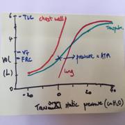 Primary FRCA - basics