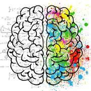 Cognitive Psychology PSYCH380