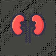 Renal and Urology