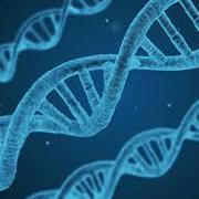 BIO161 Basic Biochemistry