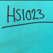 HS1023
