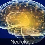 0.0 - BASES: NEUROLOGIA