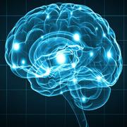 9no Neuro