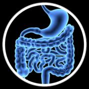 0.2 - Gastroenterologia Bases