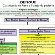 DENGUE - Classificação de Risco e Manejo do paciente