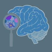 *SGUL: Neurology