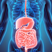 1.0 Gastro-intestinal system